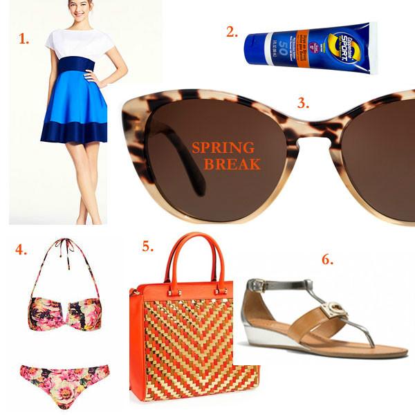 What To Take On Spring Break Chicago Fashion Blog