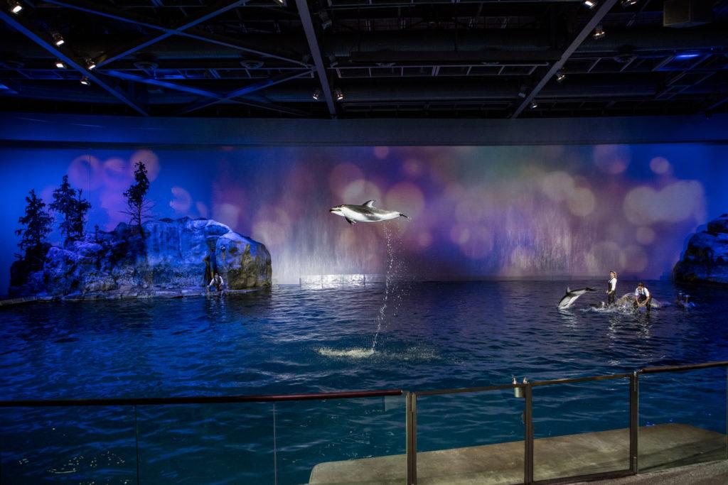 BLU 2016, Shedd Aquarium