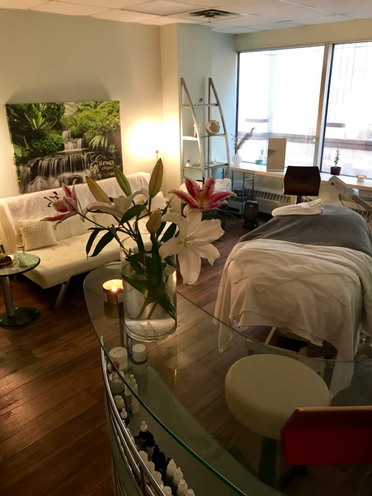 Elina Organics Spa – A Holistic Approach